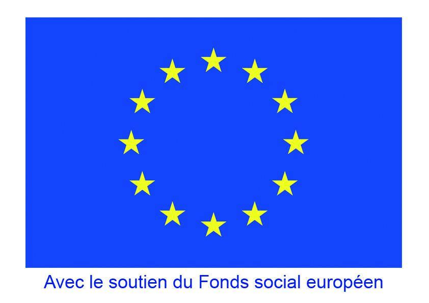logo_FSE.jpg